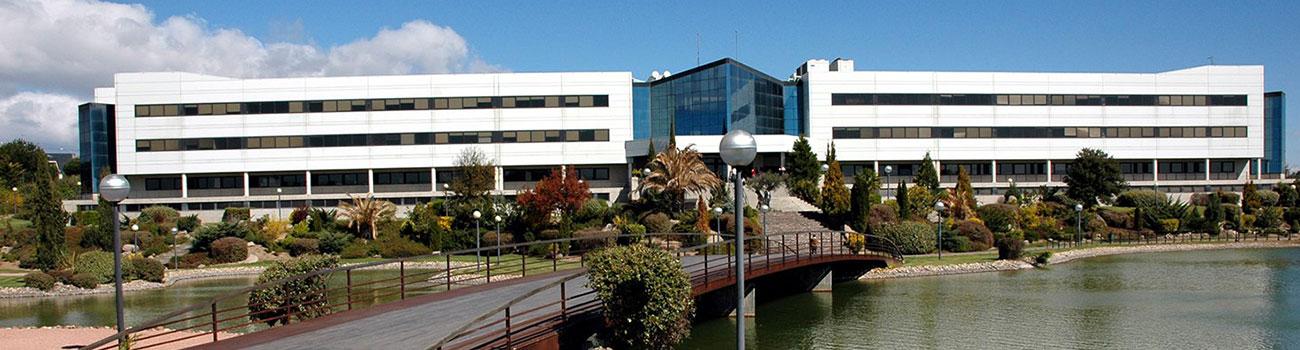 Universidad Europea De Madrid Carreras Universitarias En